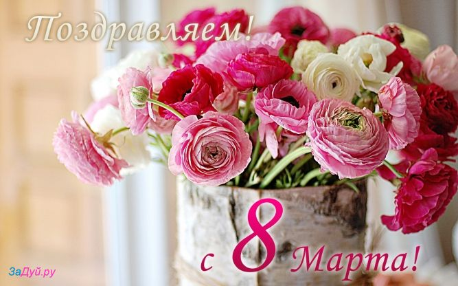 Фотографии красивые цветы на 8 марта купить искусственные цветы оптом хмельницкий
